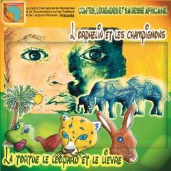 L'orphelin et les champignons, La tortue le léopard et le lièvre